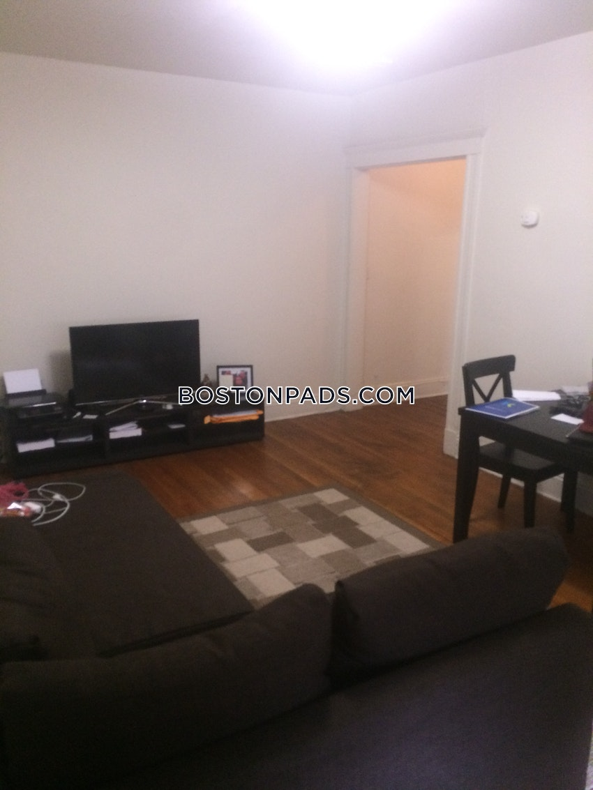 BOSTON - ALLSTON/BRIGHTON BORDER - 2 Beds, 1 Bath - Image 9