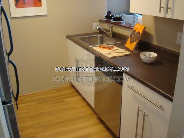 Dorchester Apartment for rent Studio 1 Bath Boston - $1,965