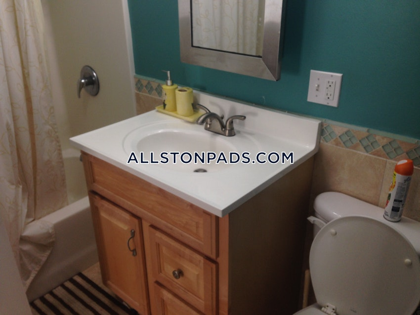 BOSTON - ALLSTON/BRIGHTON BORDER - 1 Bed, 1 Bath - Image 8