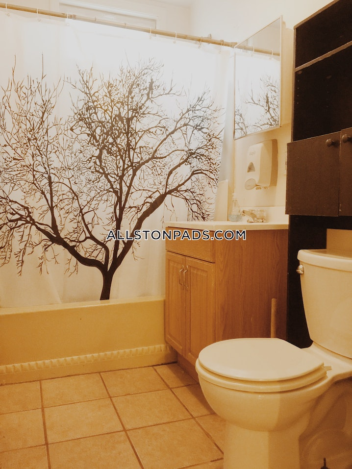 Boston - Lower Allston - 4 Beds, 1 Bath - $3,400