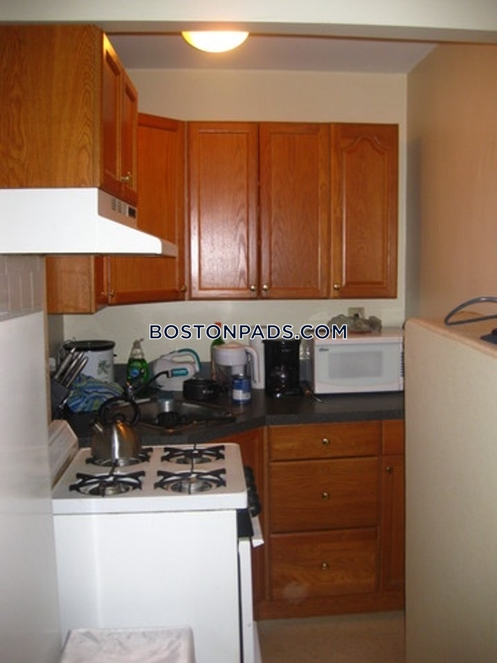 Boston - Northeastern/symphony - Studio, 1 Bath - $1,750