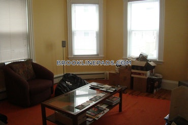 Chestnut Hill, Brookline, MA - 1 Bed, 1 Bath - $3,600 - ID#3825460