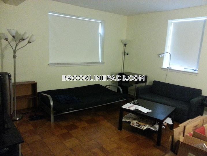 Brookline- Coolidge Corner - 2 Beds, 1 Bath - $2,995