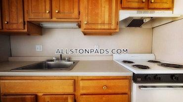 Allston/Brighton Border, Boston, MA - 1 Bed, 1 Bath - $1,950 - ID#607005