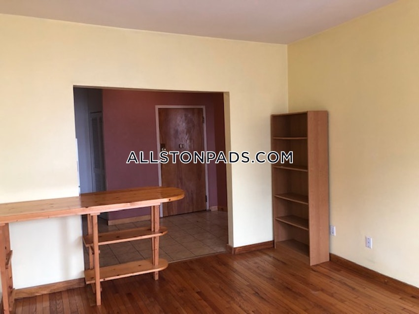 BOSTON - ALLSTON - 1 Bed, 1 Bath - Image 7