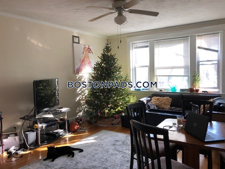 Boston - Allston/brighton Border - 1 Bed, 1 Bath - $1,850