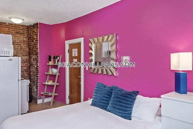 Beacon Hill Amazing Studio apartment on Anderson St  Boston - $1,700