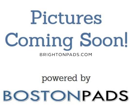 Brighton Apartment for rent 1 Bedroom 1 Bath Boston - $1,650