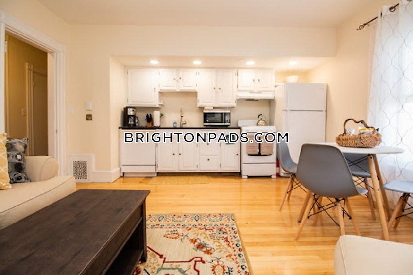 BOSTON - BRIGHTON - CLEVELAND CIRCLE - 1 Bed, 1 Bath - Image 1
