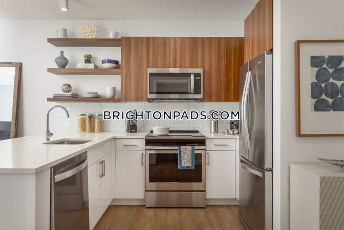 Brighton Apartment for rent 1 Bedroom 1 Bath Boston - $2,700