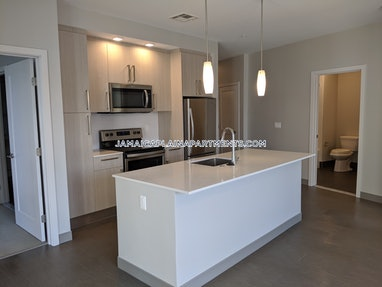 Boston - Jamaica Plain - Forest Hills - 2 Beds, 2 Baths - $3,415 - ID#623535