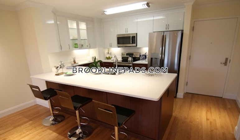 Brookline Apartment for rent 2 Bedrooms 2 Baths  Coolidge Corner - $4,500