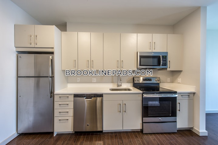 Brookline- Coolidge Corner - Studio, 1 Bath - $2,300