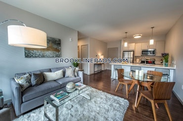 Coolidge Corner, Brookline, MA - Studio, 1 Bath - $4,300 - ID#3821881