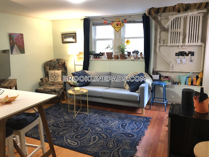 Brookline- Coolidge Corner - 3 Beds, 1 Bath - $3,300