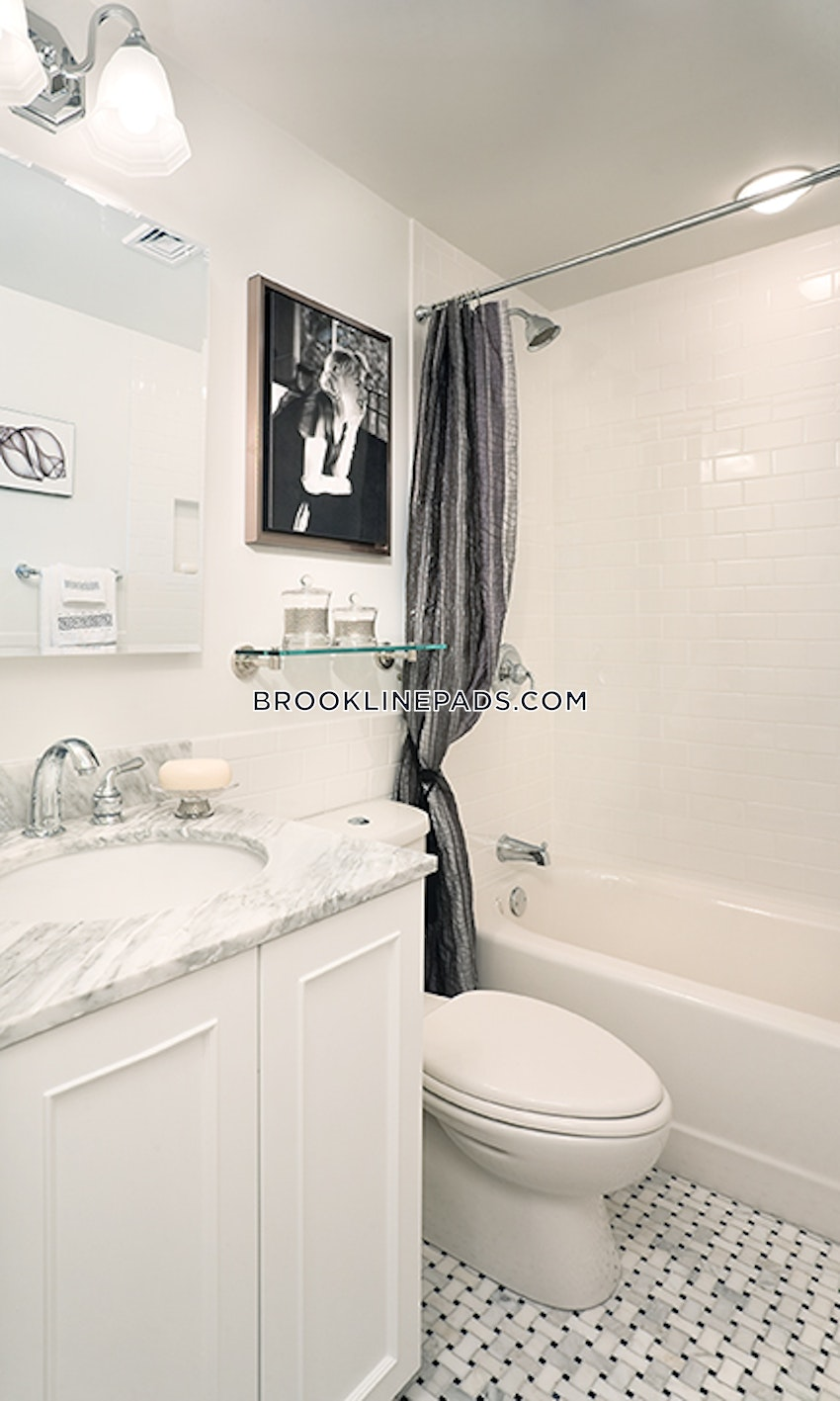 BROOKLINE- LONGWOOD AREA - 1 Bed, 1 Bath - Image 19