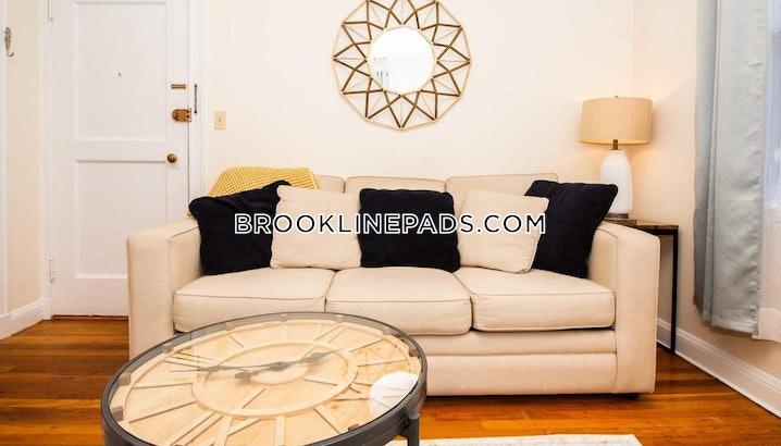Brookline- Longwood Area - 1 Bed, 1 Bath - $3,000