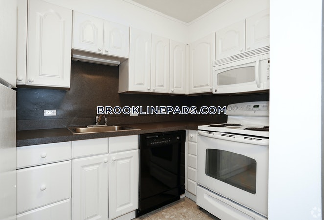 Brookline Apartment for rent 2 Bedrooms 2 Baths  Washington Square - $4,125