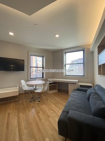 Harvard Square, Cambridge, MA - Studio, 1 Bath - $3,450 - ID#3822964