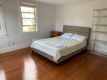 Harvard Square, Cambridge, MA - Studio, 1 Bath - $2,100 - ID#3825189